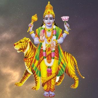 Rahu Graha Shanti Puja