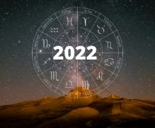 2022 Detailed Yearly Report