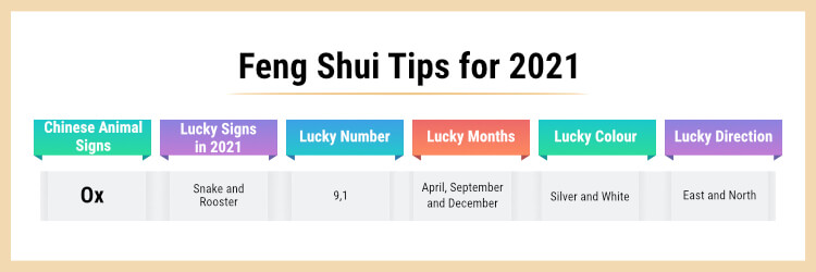 Ox feng shui tips