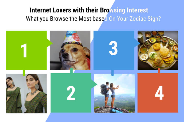 Internet Lovers with their Browsing Interest