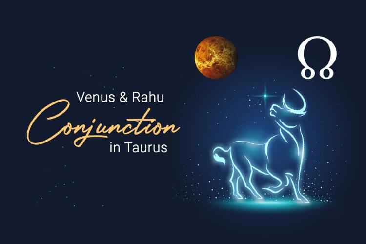 Venus Rahu Conjunction in Taurus