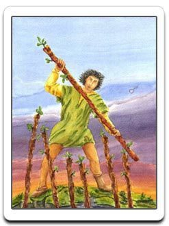 seven of wands - 7 of wands