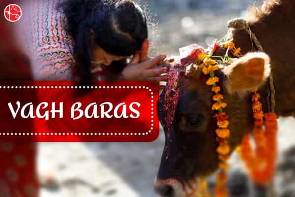 About Vagh Baras Festival