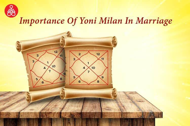 Importance Of Yoni Matching For Marriage In Kundali