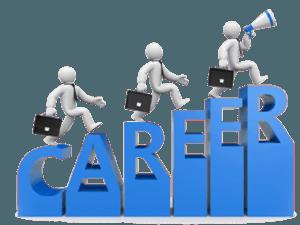 Career Report 1 Month